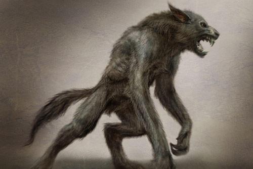 Drawn wolfman first Werewolf powered Werewolf Races Wikia