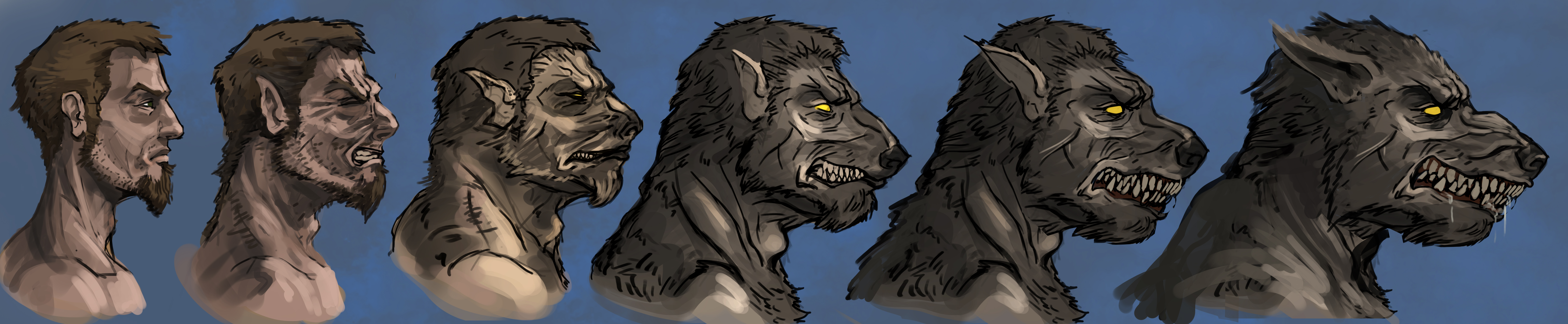 Drawn wolfman human love Explore 424 transformation Andy DeviantArt