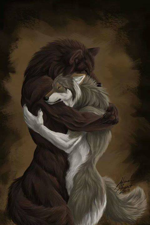 Drawn wolfman human love Love wolves/werewolves and Wolf Pinterest