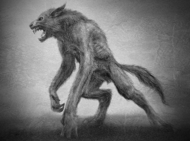 Drawn wolfman irish Werewolf picture search Mooney of