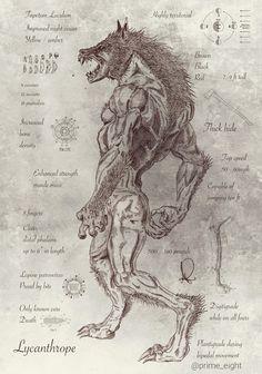 Drawn wolfman irish Been werewolf Faeries Mythical have