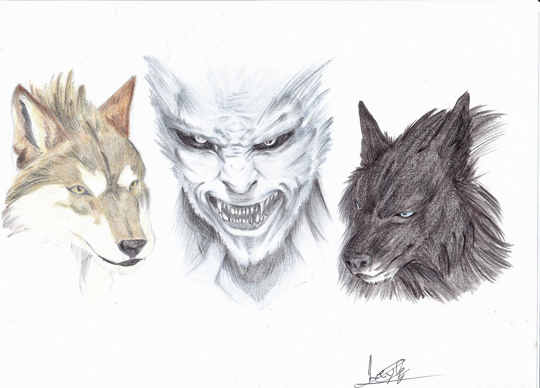 Drawn wolfman pencil drawing YouTube WolfMan  Created Timelapse