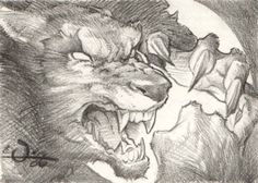 Drawn wolfman pencil drawing Horror Werewolves the sweet Comic