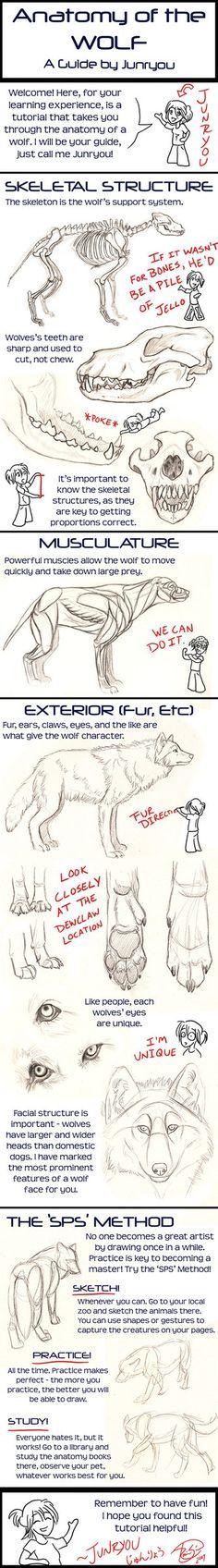 Drawn wolfman powerful A Werewolf Junryou Female a