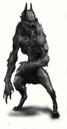 Drawn wolfman rage And Moon Pinterest Werewolf Werewolves