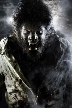 Drawn wolfman real life S and Say images Vampire