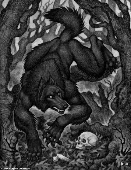 Drawn wolfman sighting Pinterest Real on Scary 20+