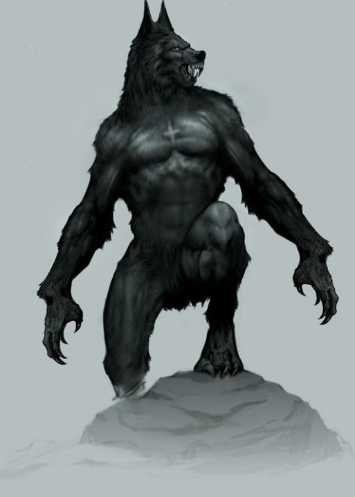 Drawn wolfman tall On con HELSING images Werewolf