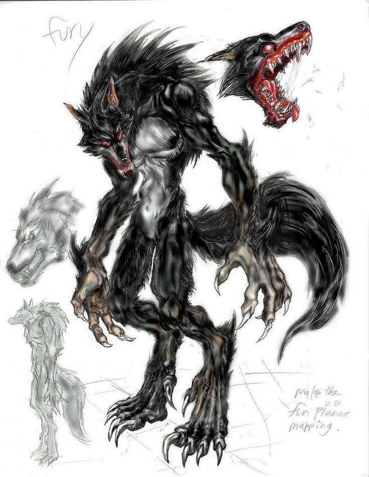 Drawn wolfman tall Find on more werewolf this
