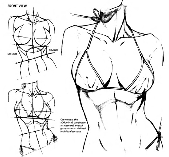 Drawn women athletic Drawing Tutorial Figure  Drawing