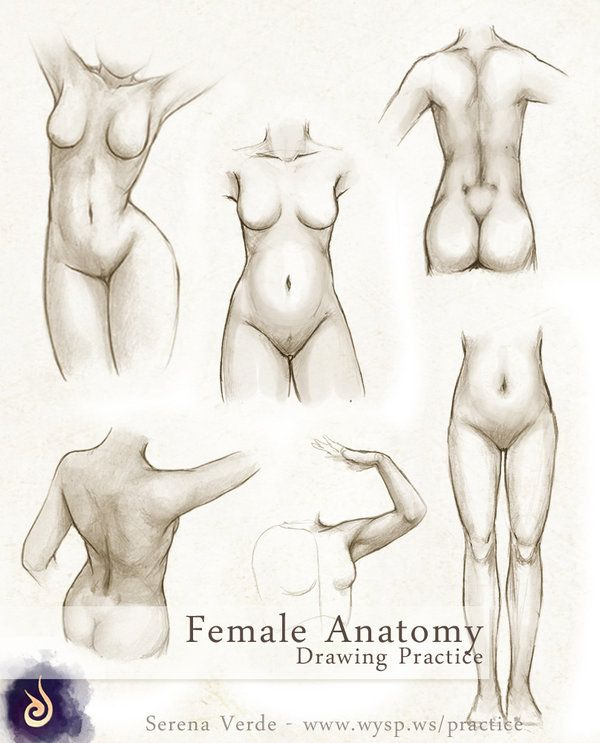 Drawn figurine practice Body about Drawing Pinterest best