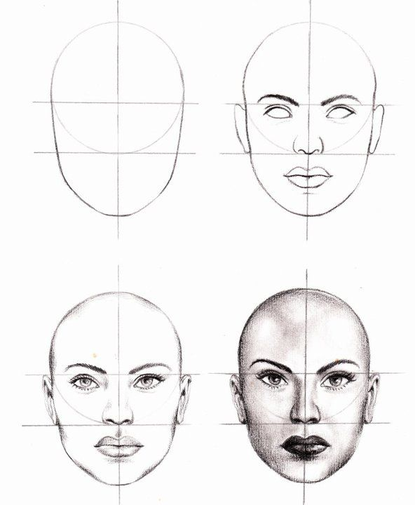 Drawn portrait human face Tutorials Drawing Best beginners Study