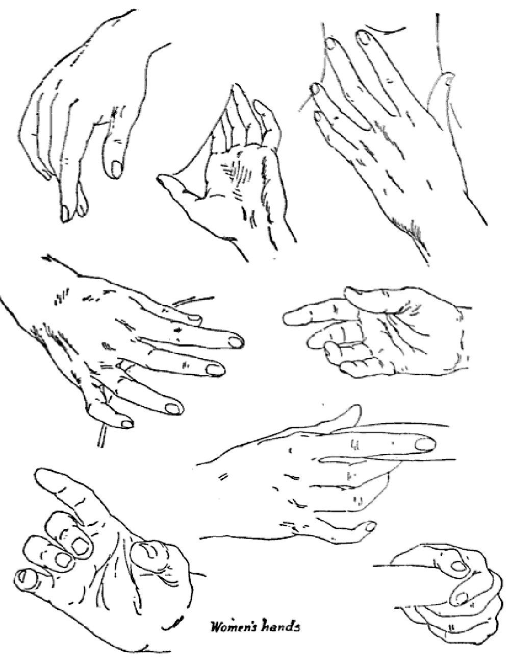 Drawn women different : With References Poses Hands