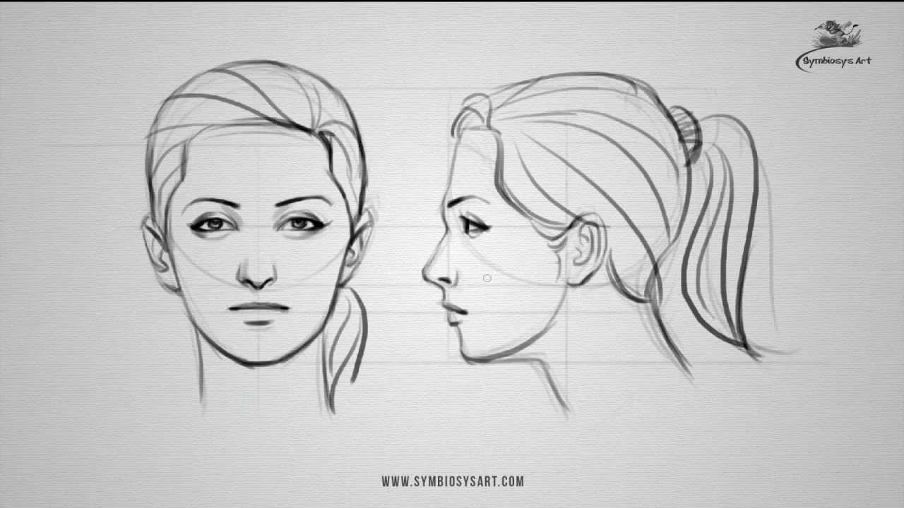 Drawn profile simple View How front  female