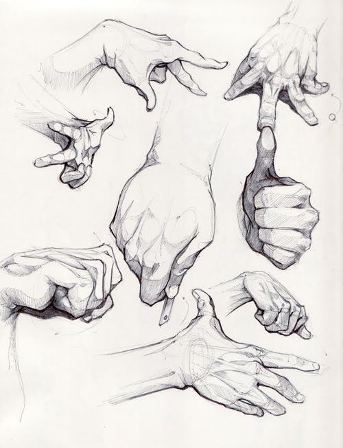 Drawn women hand sketch On sketch reference 25+ Drawings