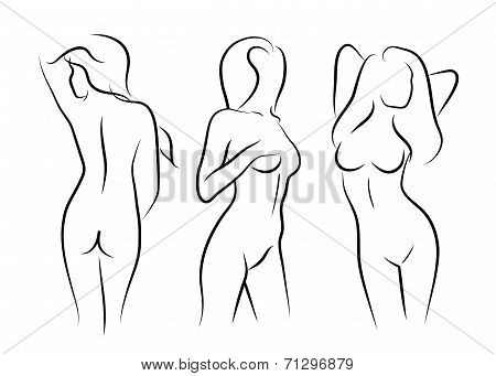 Drawn women line art Image for Line result for