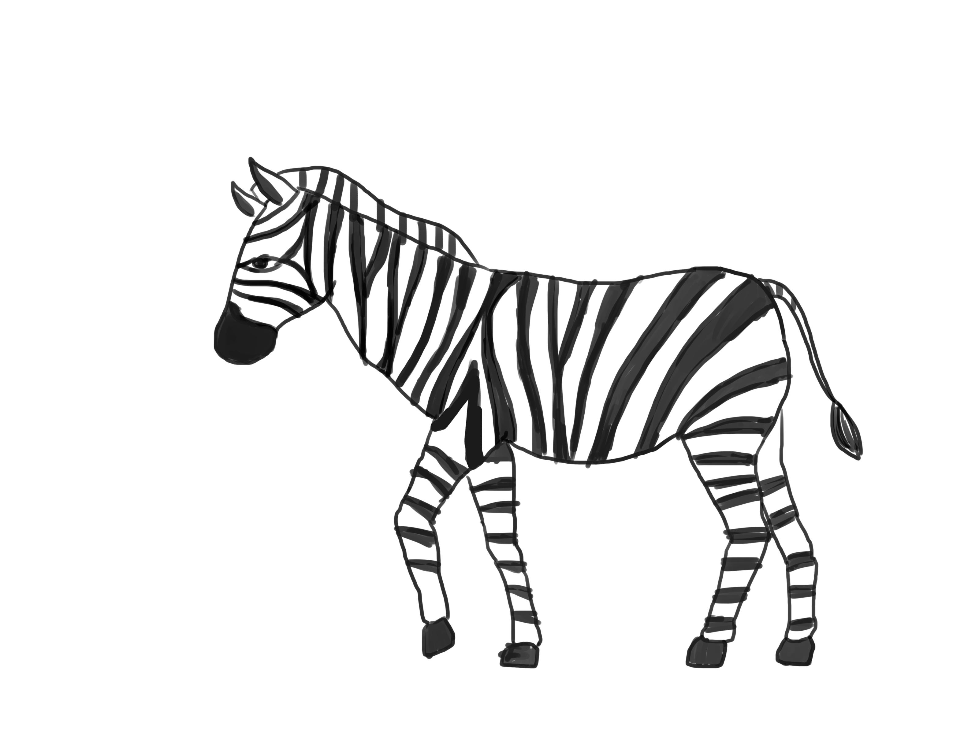 Drawn zebra #5