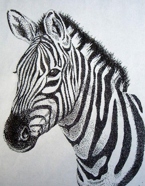 Drawn zebra #10