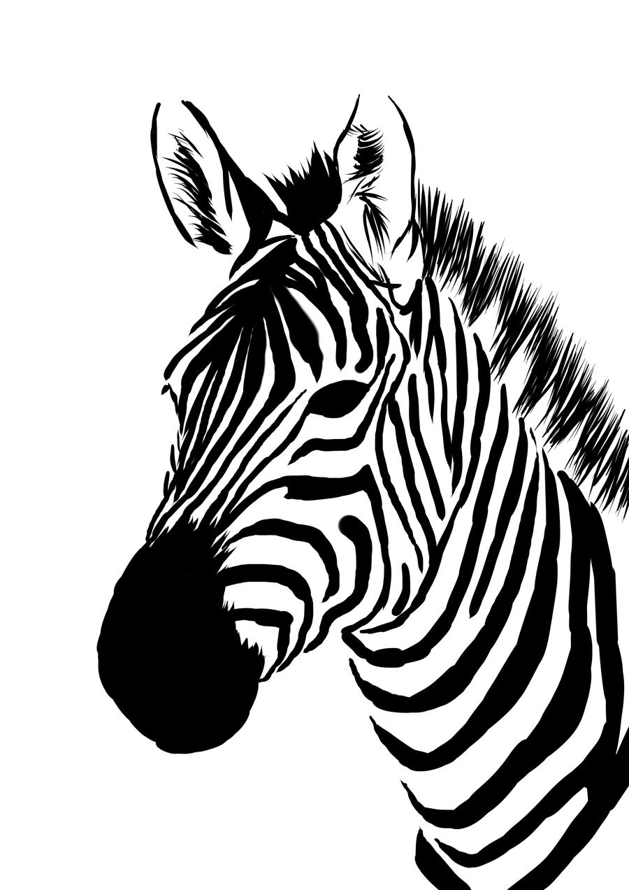 Drawn zebra Drawing Art Realistic Zebra Pencil
