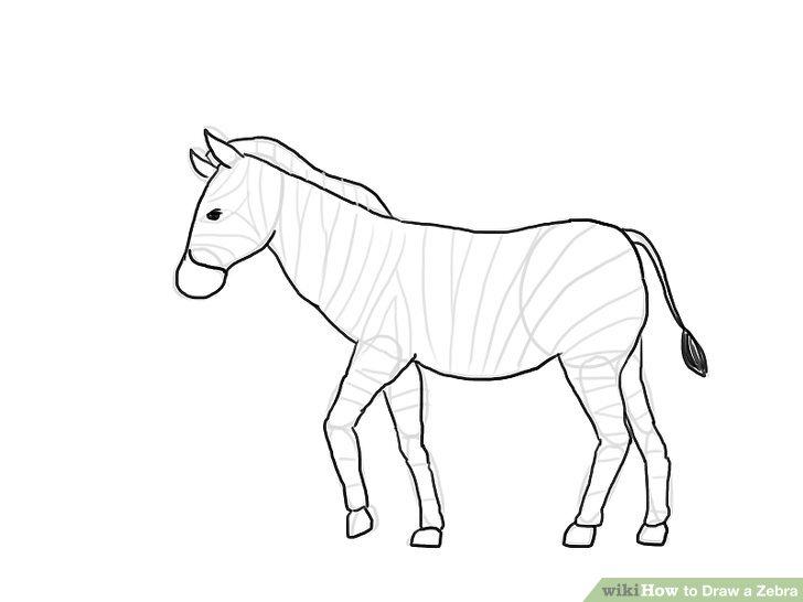 Drawn zebra Draw Step Zebra (with Image