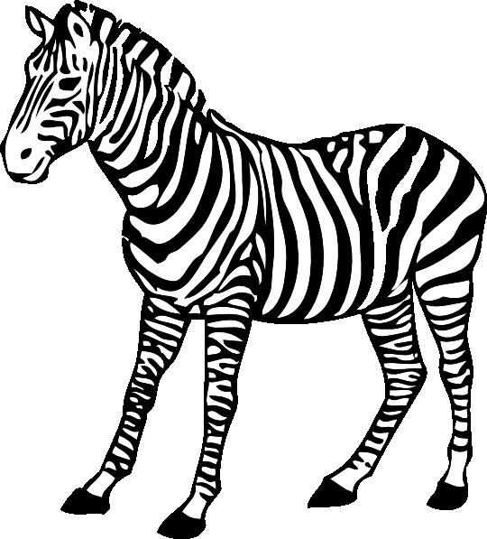 Drawn zebra Free image Clip Zebra art