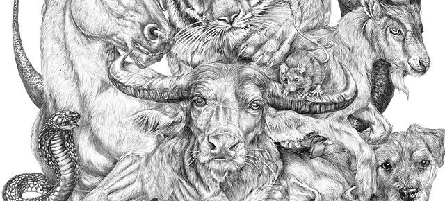 Drawn zodiac giant #7