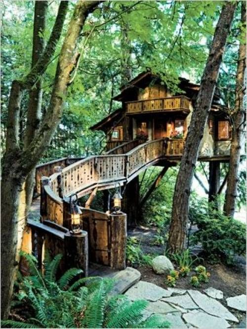 Dream clipart guest house 19 on house! Tree houses