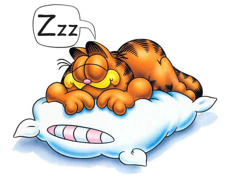 Dreaming clipart zzzz Guernseydonkey Why Zzzz do com