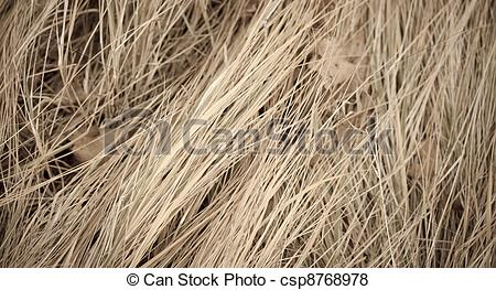 Dry Grass clipart #3