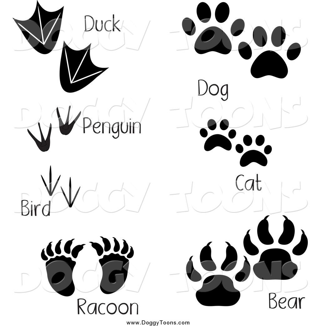 Footprint clipart raccoon Bird Duck Bear  Dog