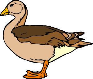 Albatross clipart goose Download You Quack Clipart Up