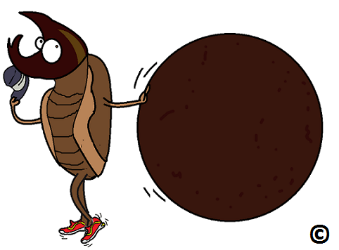 Dung Beetle clipart Beetles Dung moonwalking walkers moon