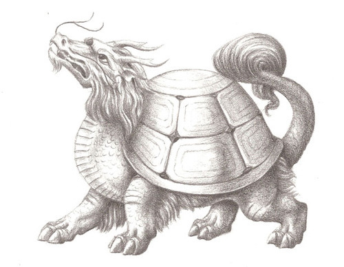 Dungeons & Dragons clipart dragon turtle #13