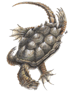Dungeons & Dragons clipart dragon turtle #2