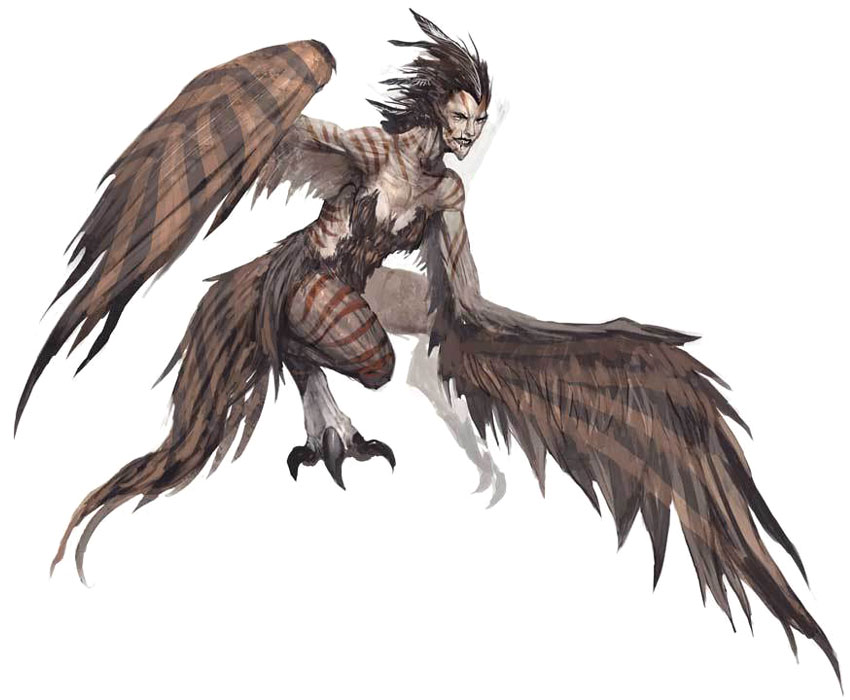 Dungeons & Dragons clipart harpy Harpy  Mythology Harpy female