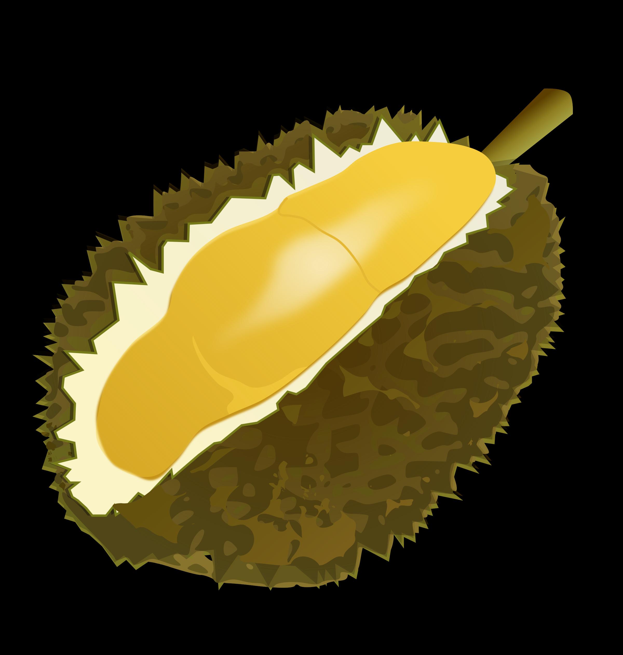Durian clipart Clipart Durian Durian