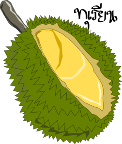 Durian clipart star fruit Durian at clip online vector