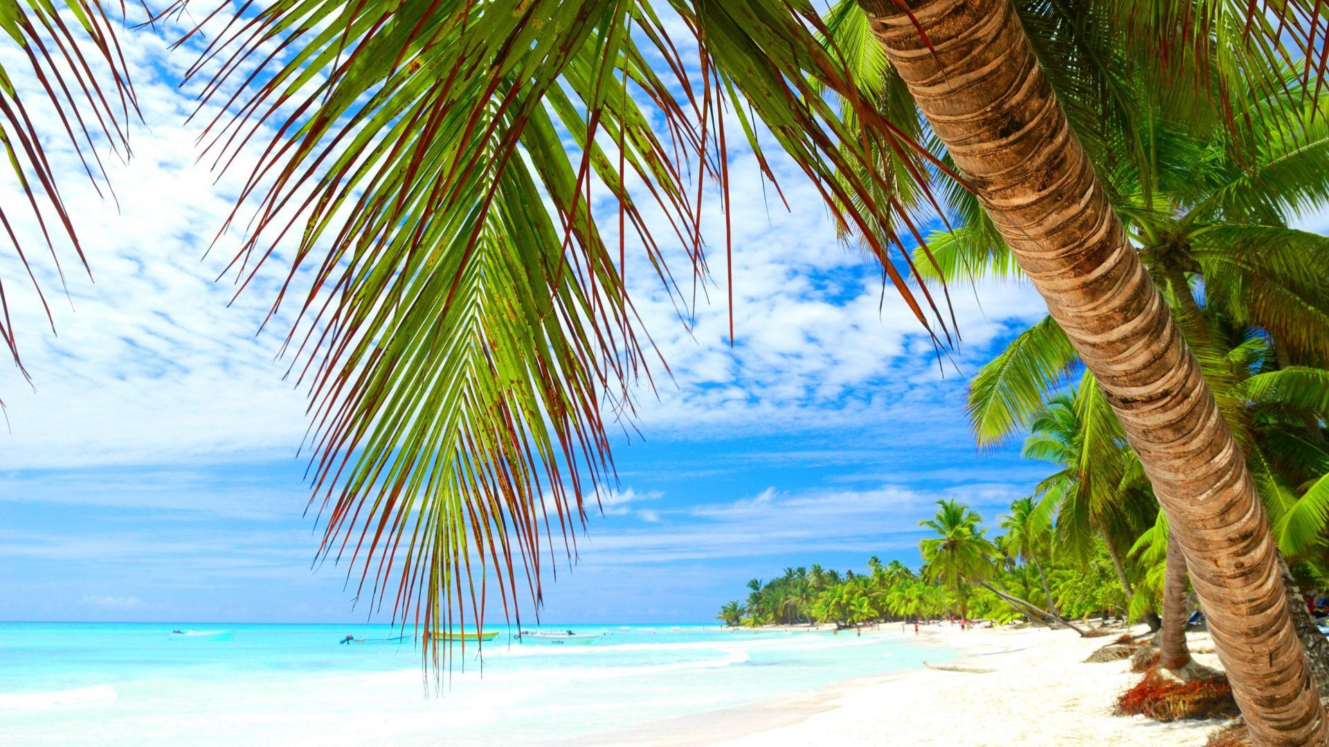 Dusk clipart vacation Boats Trees Sand Tropical Dusk