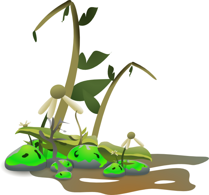 Green Day clipart vegetation Cliparts Dying Dying Plant Clipart
