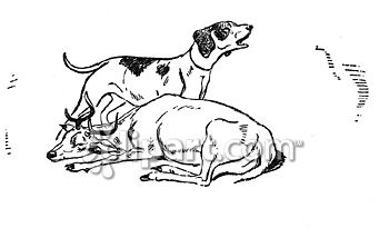 Dying clipart dog Crying School Edition dog com/search/close