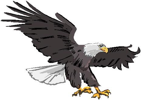 Eagle clipart Eagle art clip 3 Free