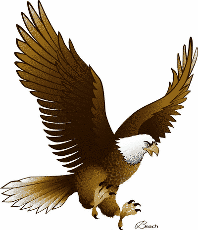 Brds clipart eagle Clipart free art Pictures with