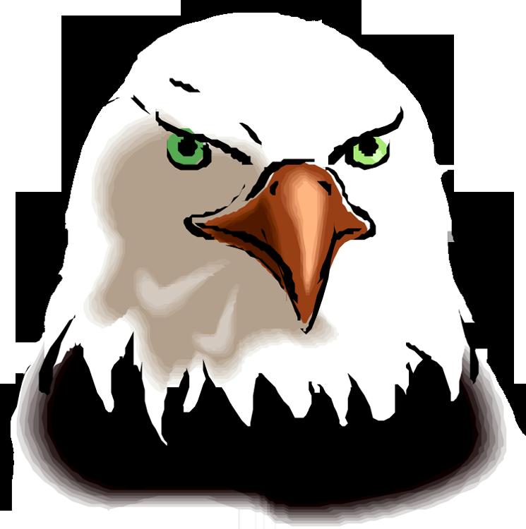 Bald Eagle clipart face Com 4 clipart Free Free