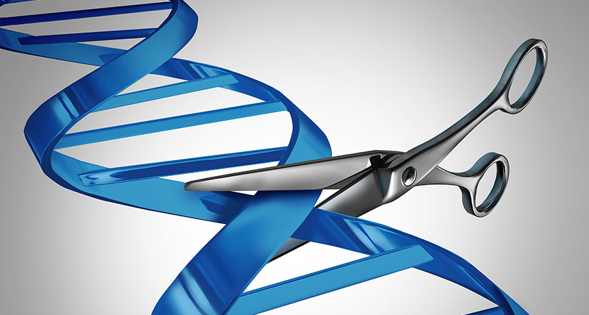 Editingsoftware clipart science research Cutting illustration gene Human Science