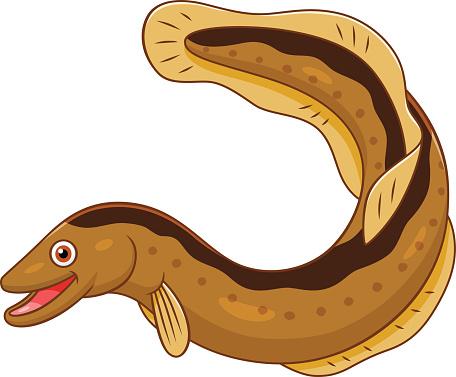Eel clipart #4