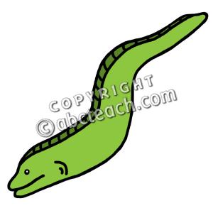 Eels clipart #14