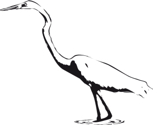 Egret clipart Art Clip Egret Download Egret