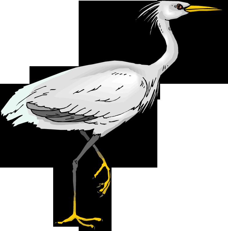 Egret clipart Clipart Heron Free Clipart Heron