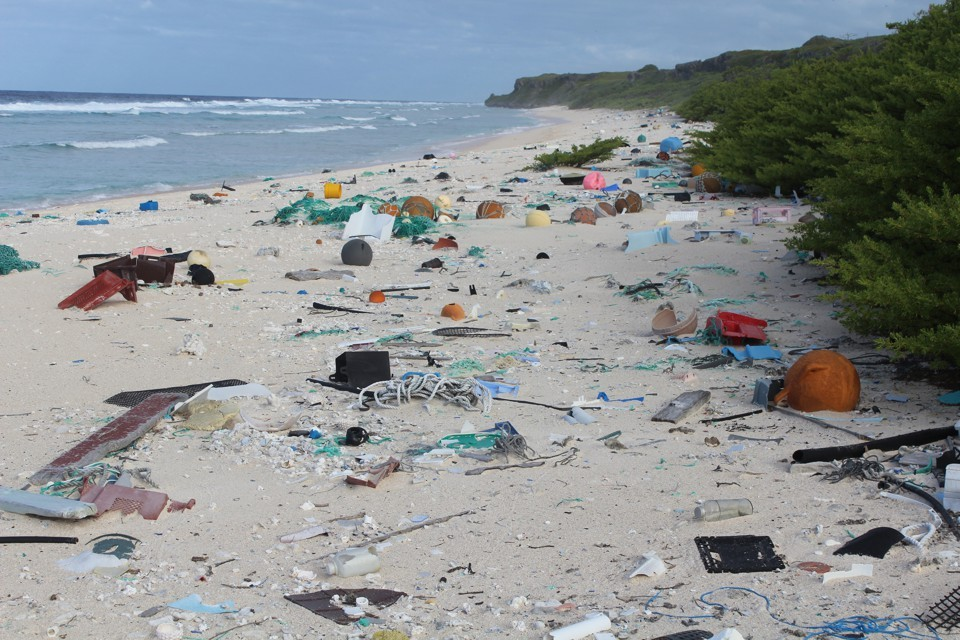Eiland clipart beach cleanup Beach A Island The Now