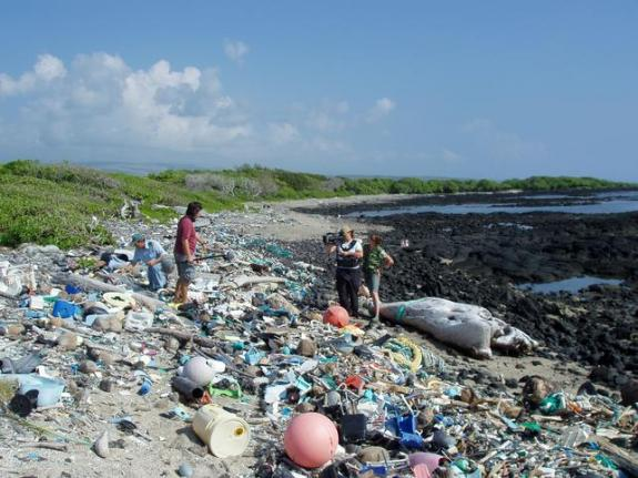 Eiland clipart beach cleanup Wikipedia Beach Kamilo